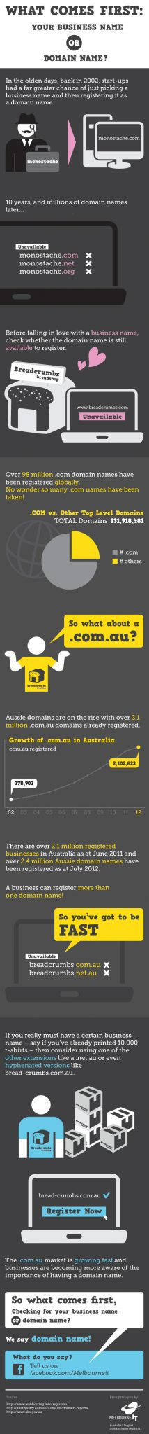business-name-or-domain-name-first-infographic